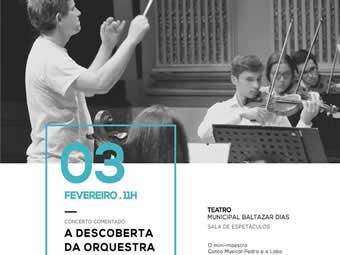 A Descoberta da Orquestra Sinfónica